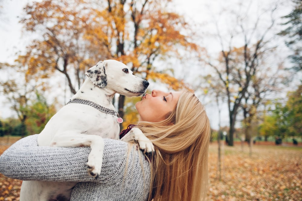 Check Unconditional Love For The Pets By Owners 1