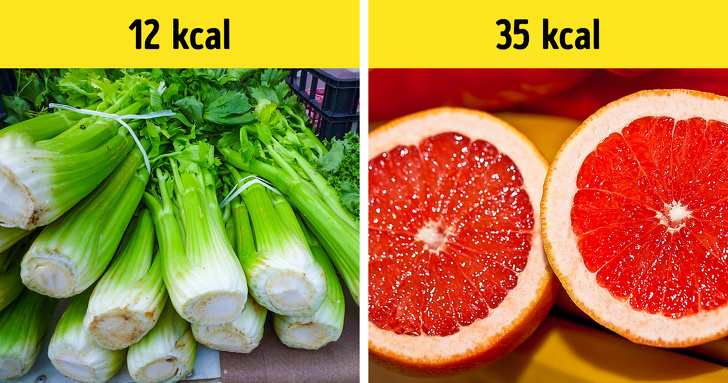 7 Best Examples Of Vegetables In The Ancient Time And Their Evolution Till Today 10