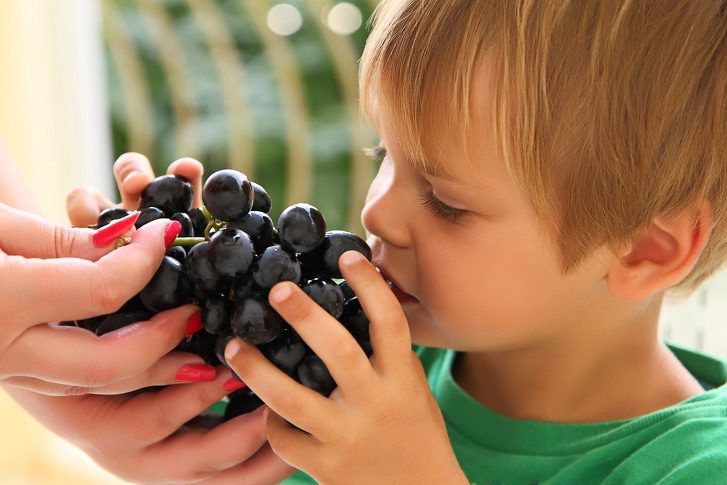 3 Facts That Says We Should Cut Grapes In Half To Let Your Baby Eat It 1
